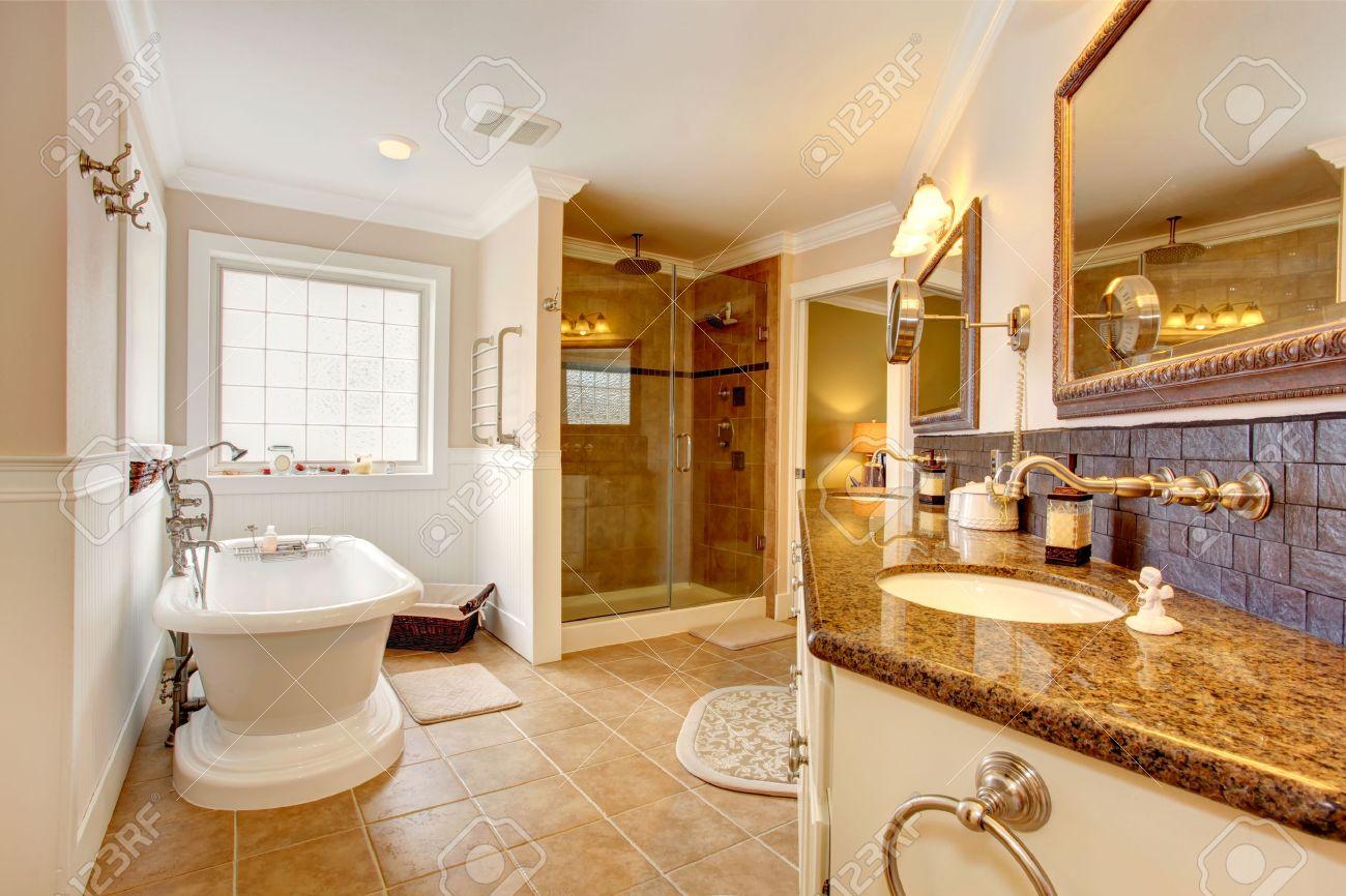 interieur de salle de bain de luxe chambre avec douche vitree armoire avec dessus en granit et deux lavabos miroirs et baignoire blanche