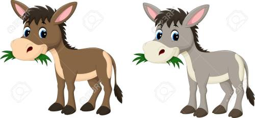 small resolution of funny donkey eating grass stock vector 56063507