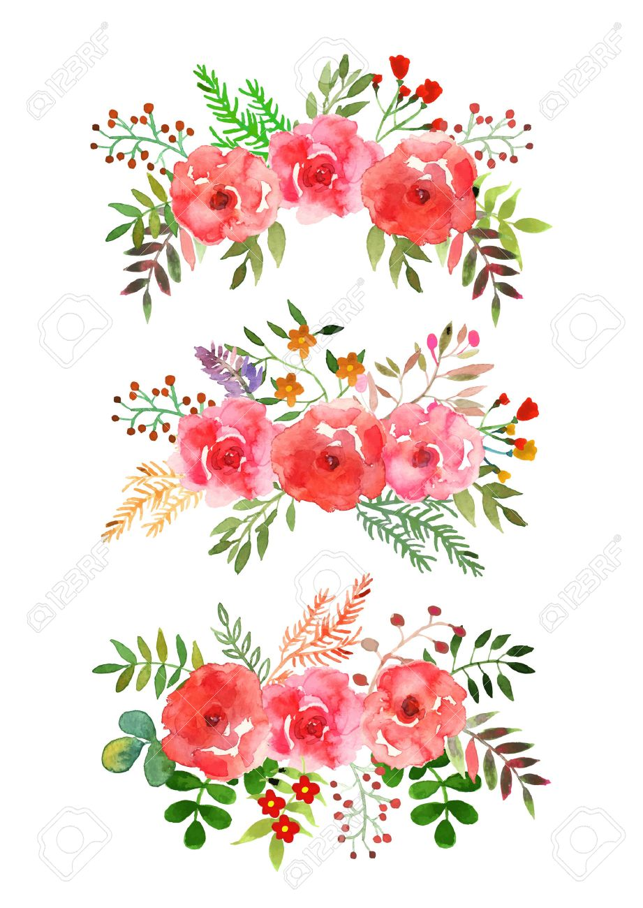 vector flowers set colorful