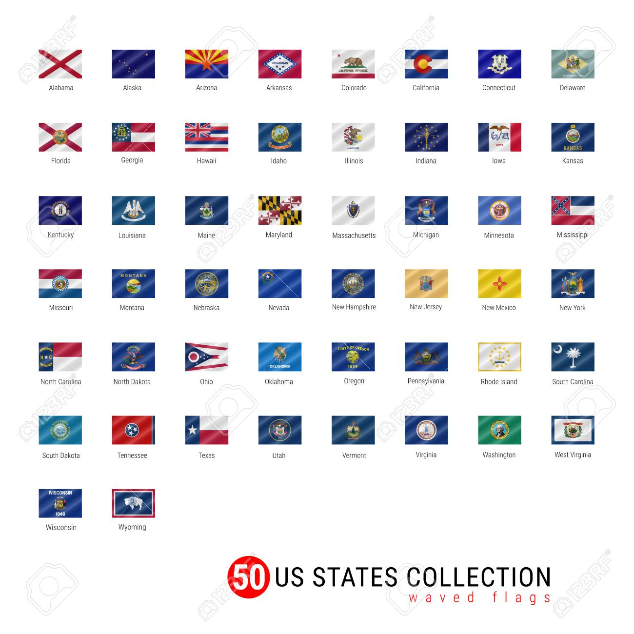 50 us states vector