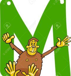 cartoon illustration of m letter for monkey stock vector 13070813 [ 1039 x 1300 Pixel ]