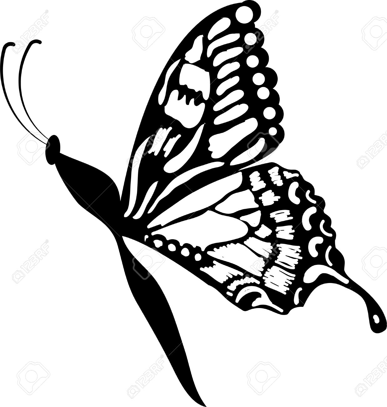 hight resolution of butterfly clipart stock vector 53413974