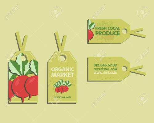 small resolution of summer farm fresh sticker template or brochure design with radish mock up design with