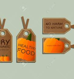 stylish farm fresh badges stickers templates set organic bio pumpkin dark design [ 1300 x 1040 Pixel ]