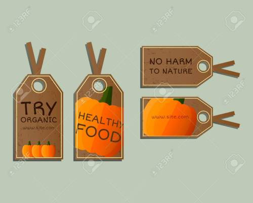 small resolution of stylish farm fresh badges stickers templates set organic bio pumpkin dark design