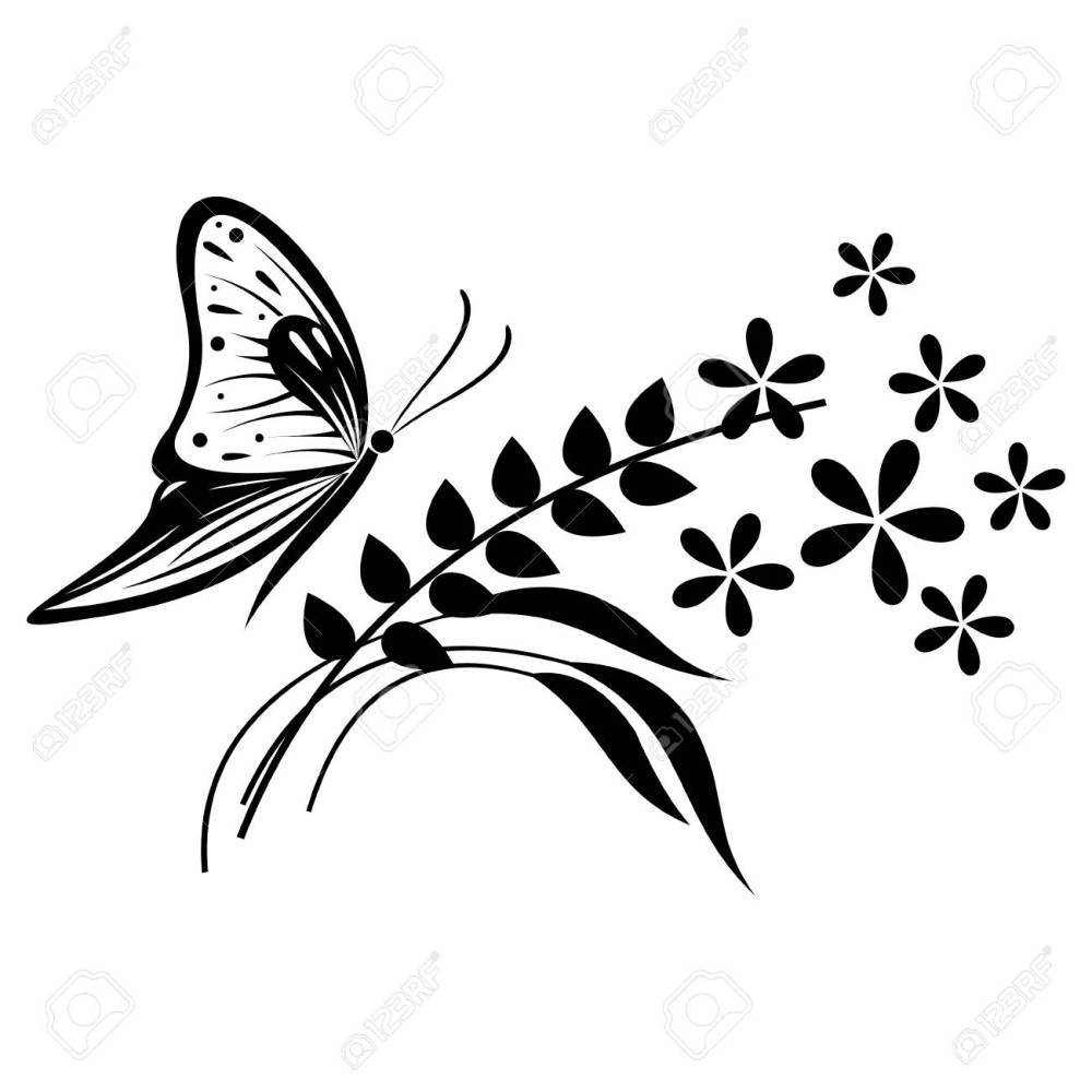 medium resolution of vector vector illustration of insect black and white butterfly flowers and branches with leaves isolated on the white background