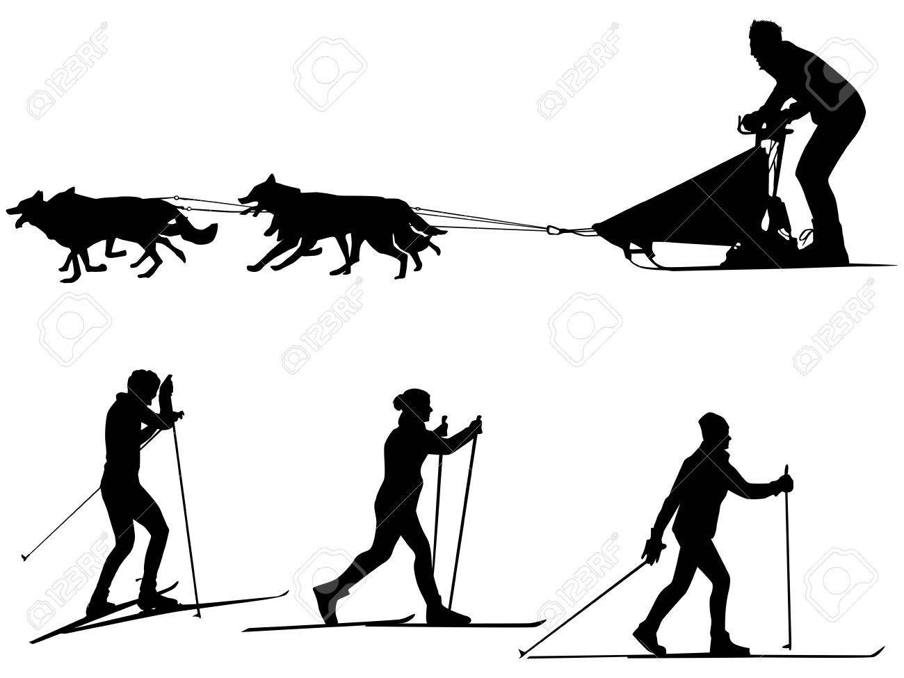 hight resolution of cross country skiing and dog sledding sport silhouette team of dogs stock vector 52467215