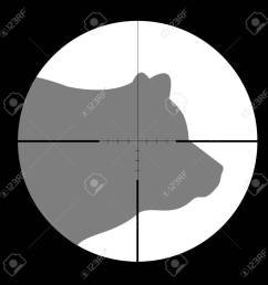 hunting season with bear in gun sight stock vector 51857936 [ 1300 x 1300 Pixel ]
