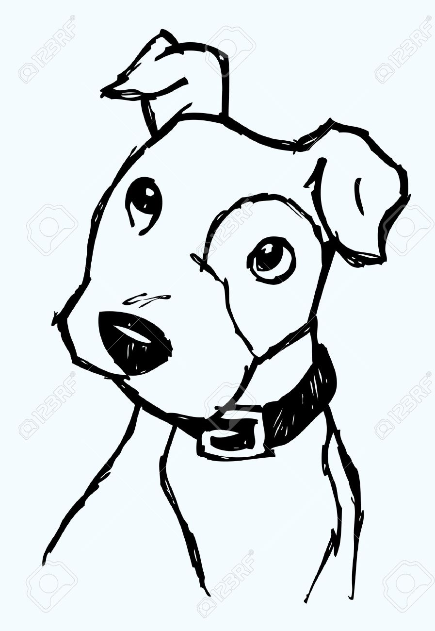 How To Draw A Puppy Face : puppy, Puppy, Drawing, Ideas