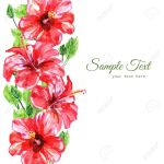 Frame From Red Watercolor Hibiscus Flowers Illustration Isolated Stock Photo Picture And Royalty Free Image Image 50886147