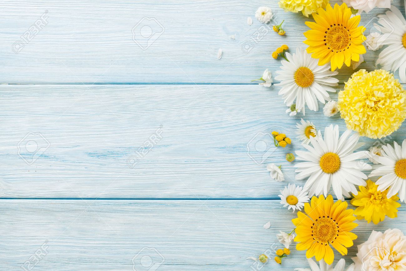 Garden Flowers Over Blue Wooden Table Background Backdrop With Stock Photo Picture And Royalty Free Image Image 68840912