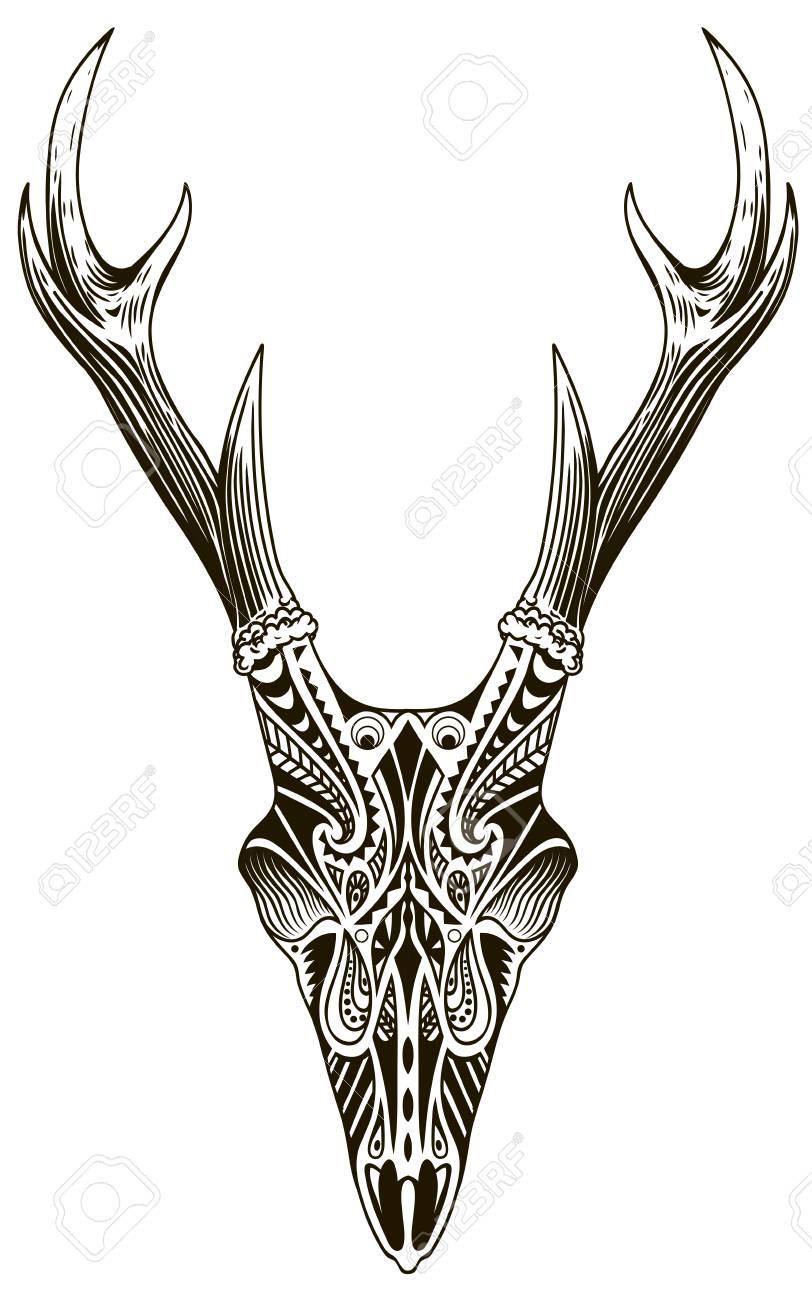 Deer Skull Vector : skull, vector, Skull, White,, Drawn, Vintage, Illustration, Royalty, Cliparts,, Vectors,, Stock, Illustration., Image, 109162013.