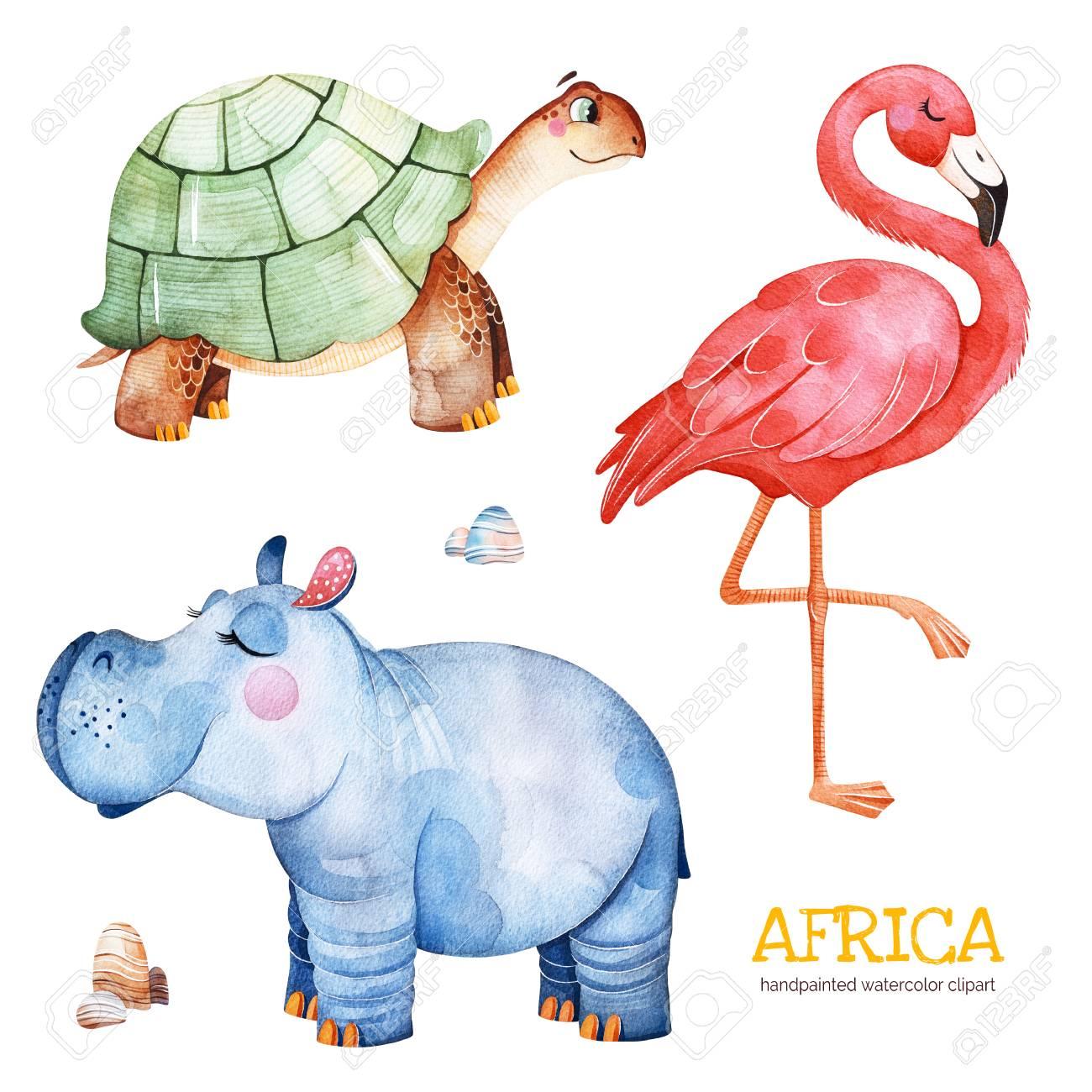 africa watercolor set safari