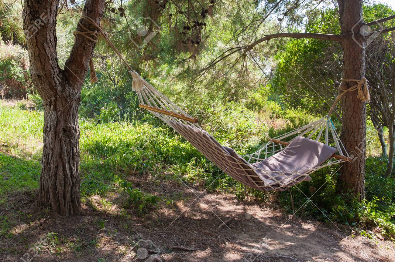 colorful hammock between two