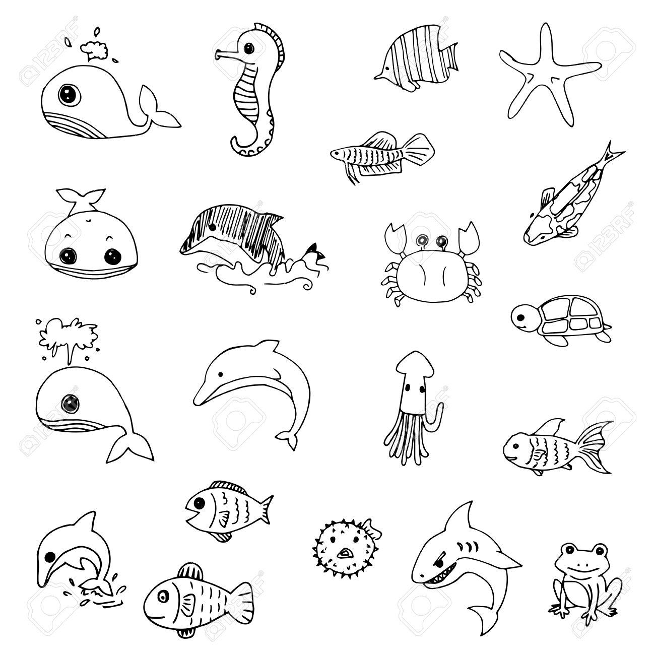 aquatic animals drawn vector