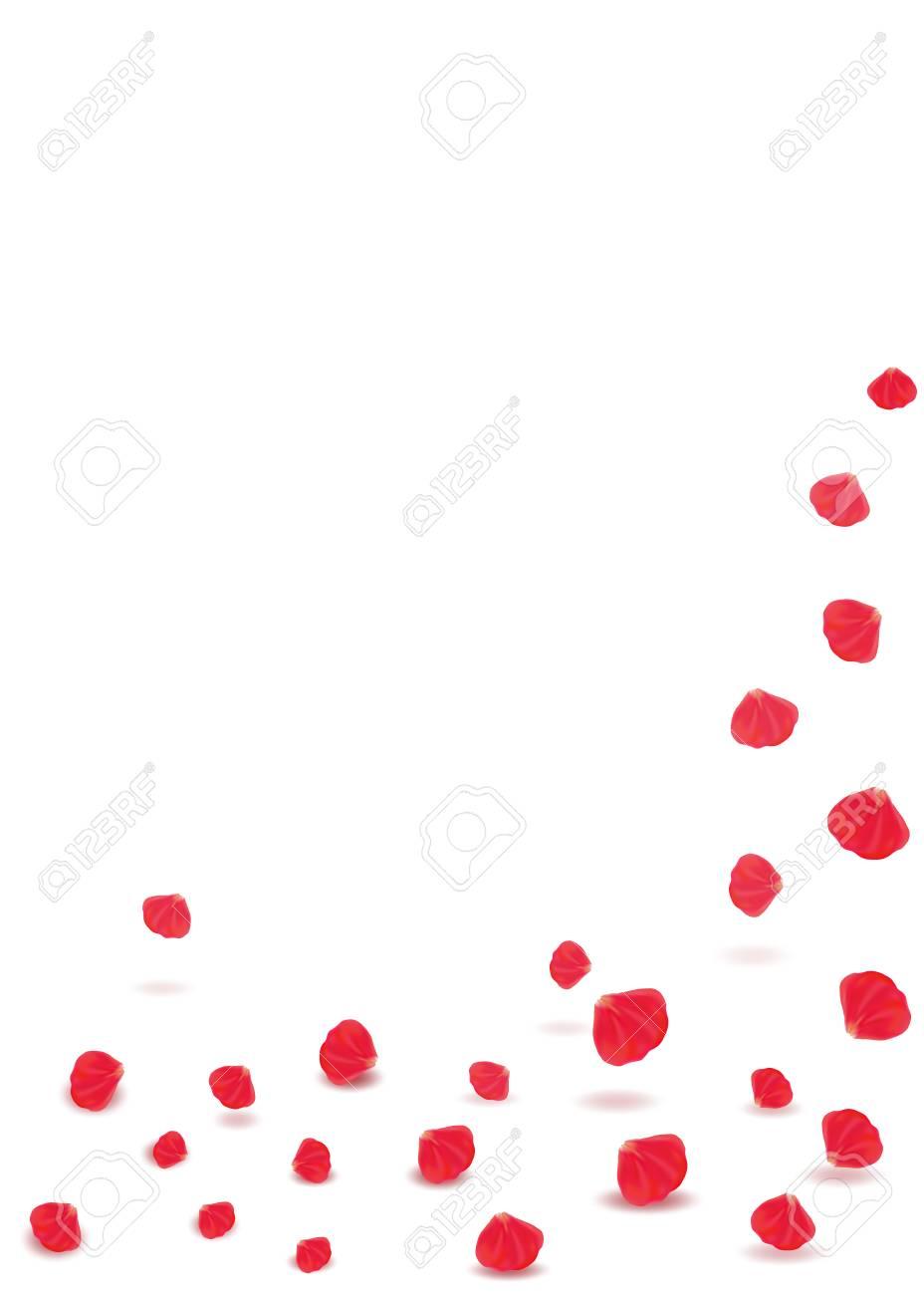 falling rose petals valentines