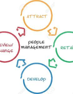 Illustration people management business diagram whiteboard chart also rh rf