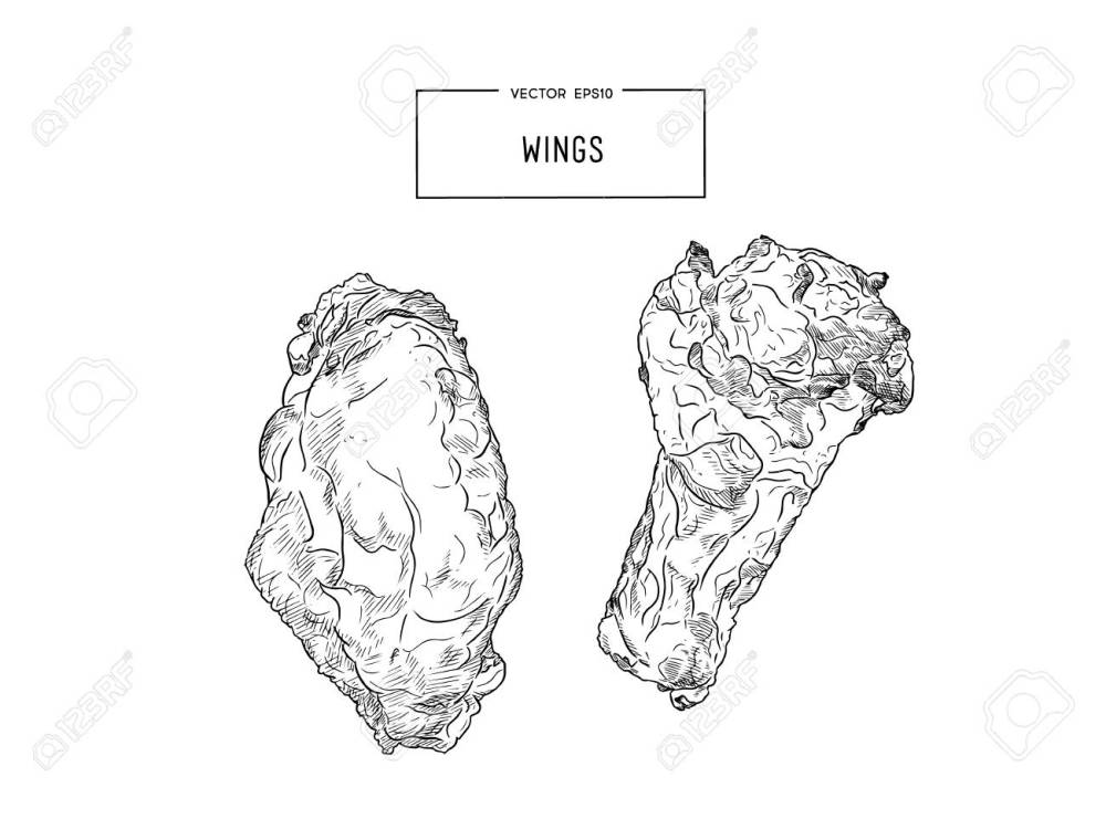 medium resolution of hand drawn sketch buffalo chicken wings vector black and white vintage illustration isolated object