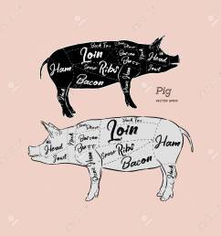 cut of meat set poster butcher diagram scheme and guide pork vintage [ 1300 x 1300 Pixel ]