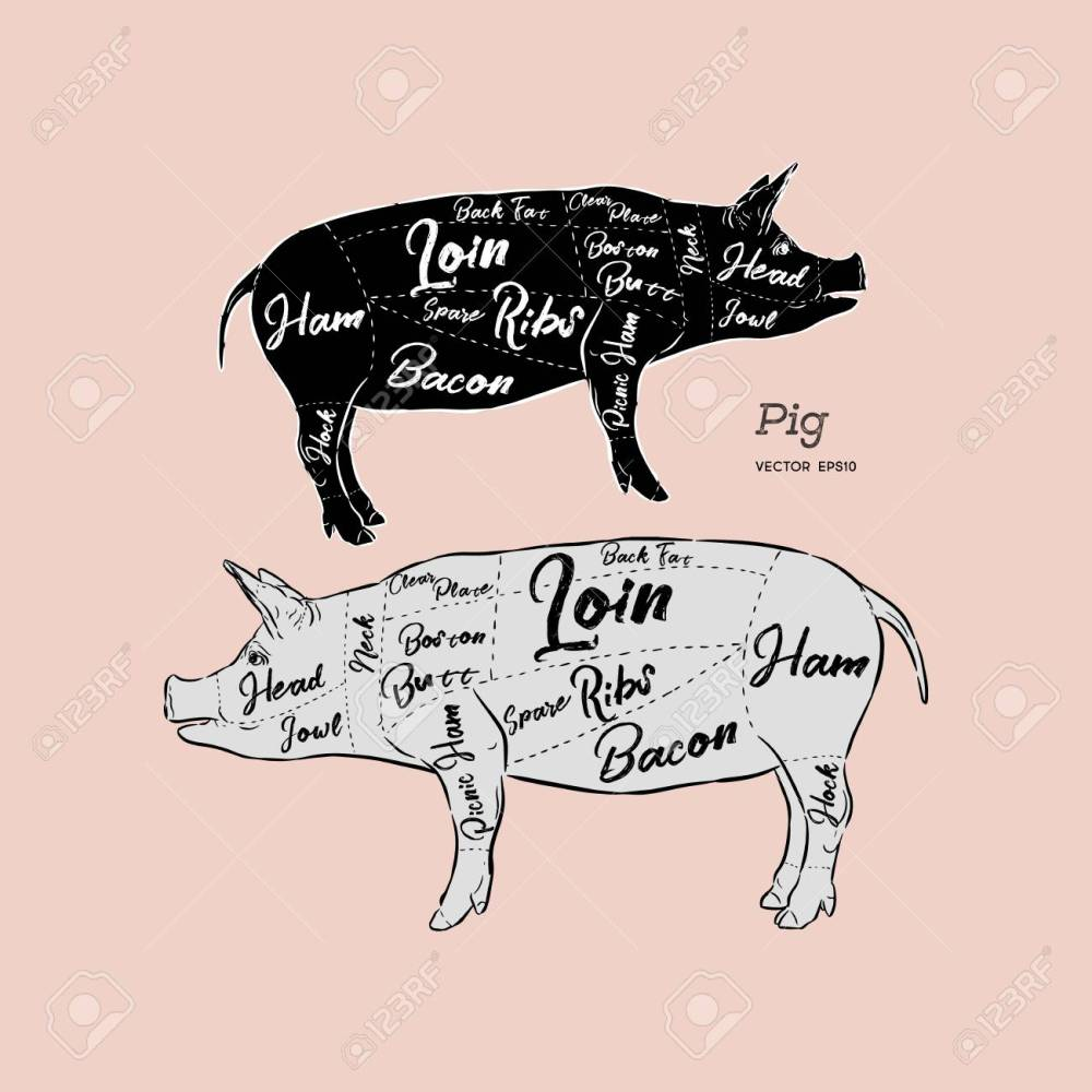 medium resolution of cut of meat set poster butcher diagram scheme and guide pork vintage