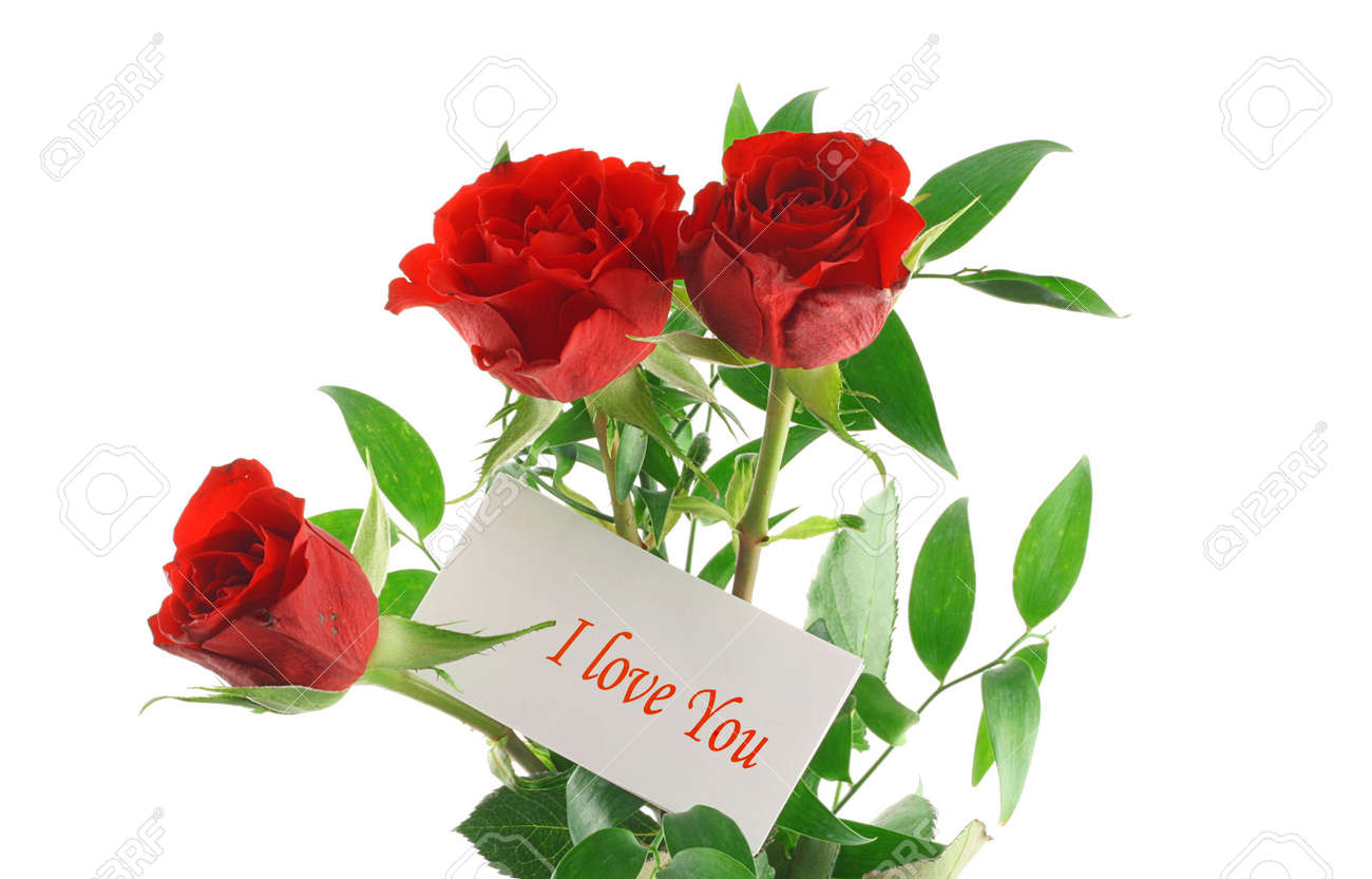 three red roses with