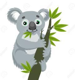 koala bear on wood branch with green leaves australian animal funniest koala sitting on eucalyptus [ 1300 x 1300 Pixel ]
