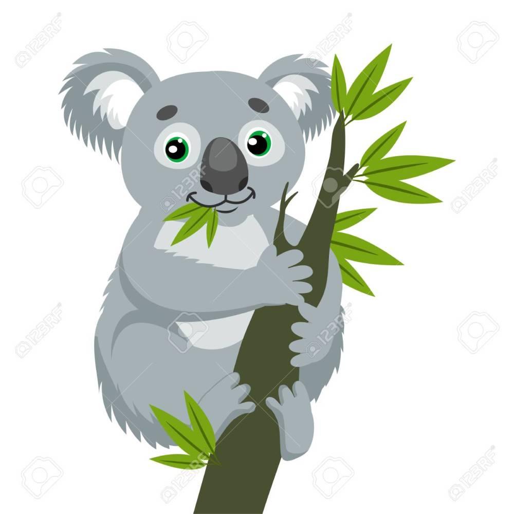 medium resolution of koala bear on wood branch with green leaves australian animal funniest koala sitting on eucalyptus