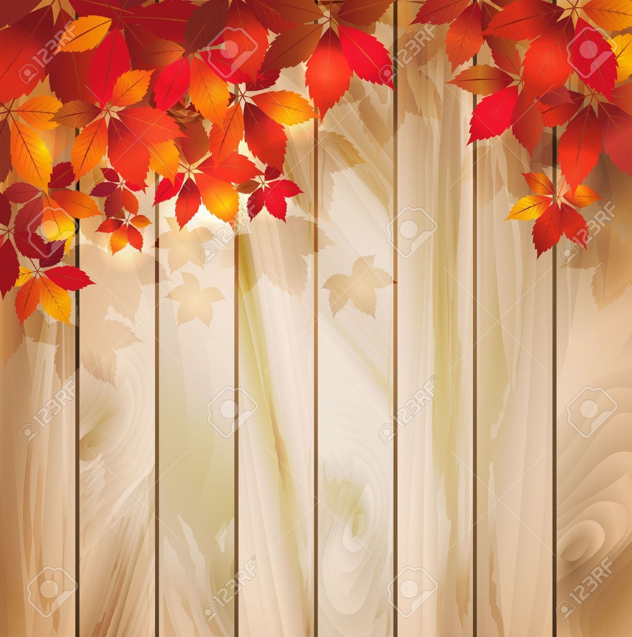 hight resolution of autumn background with leaves on a wood texture