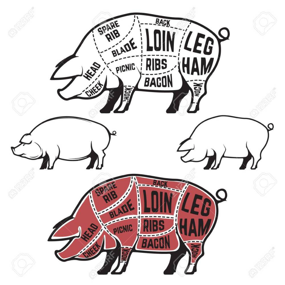medium resolution of butcher diagram scheme and guide pork cuts set of pig silhouettes isolated on
