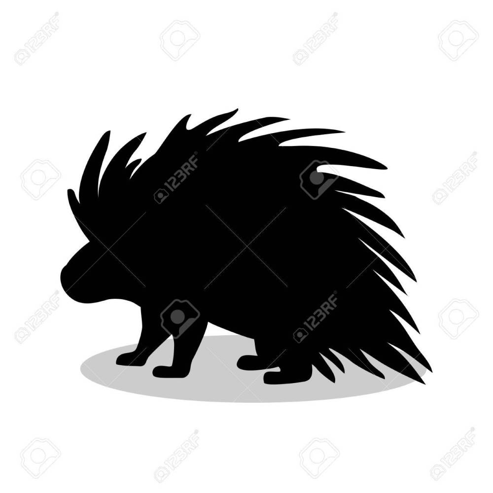 medium resolution of porcupine rodent mammal black silhouette animal stock vector 77736747