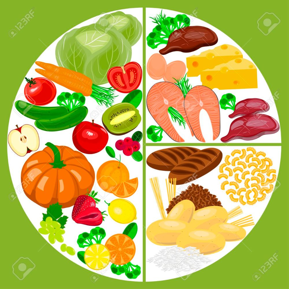 medium resolution of healthy eating food plate healthy nutrition balance diagram stock vector 69463352