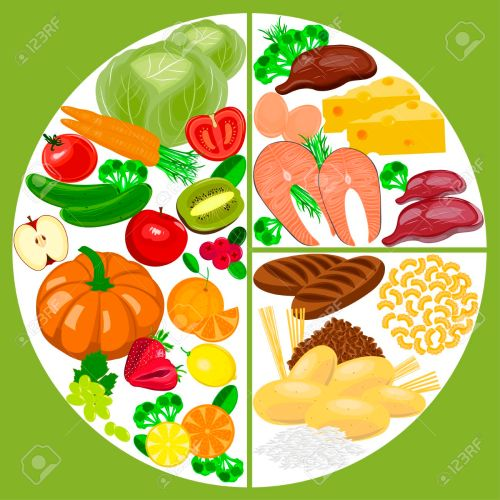 small resolution of healthy eating food plate healthy nutrition balance diagram stock vector 69463352