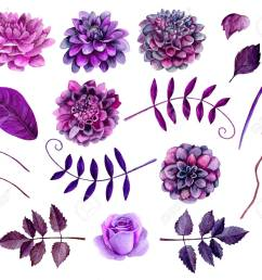 stock photo watercolor purple flowers clipart floral clip art [ 1300 x 1133 Pixel ]