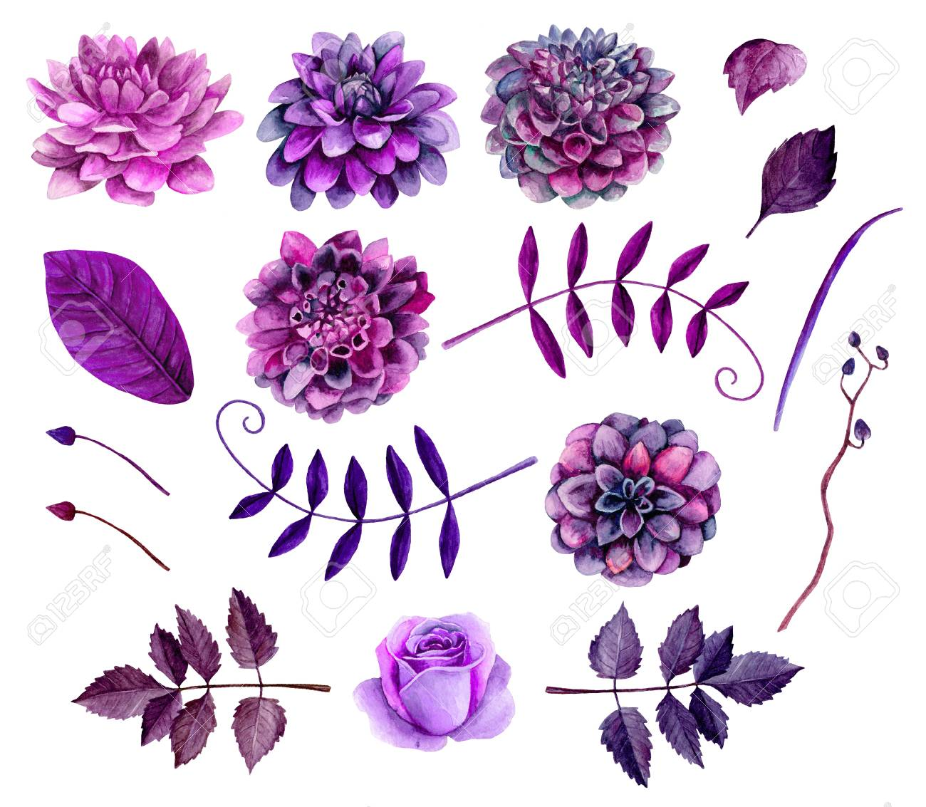 hight resolution of stock photo watercolor purple flowers clipart floral clip art