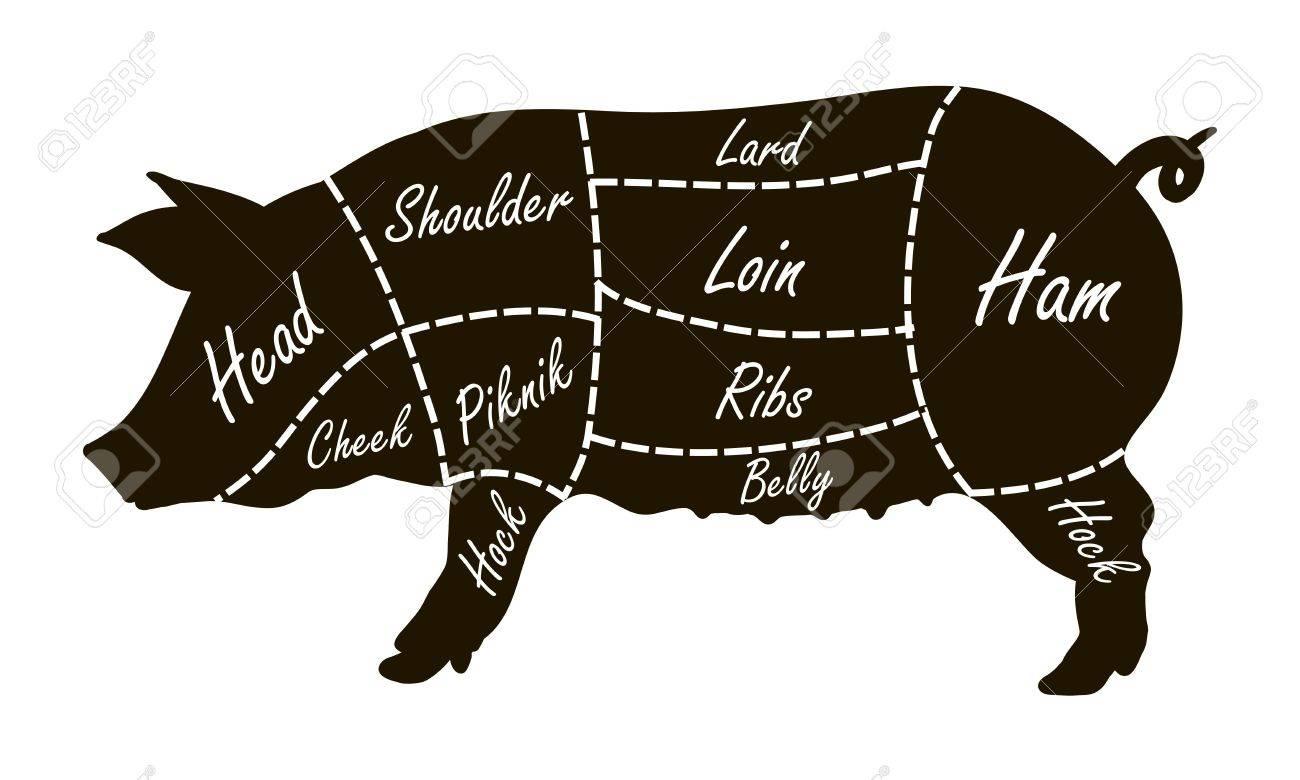 pig cuts diagram fennec fox pork butcher royalty free cliparts vectors and stock vector 78912117