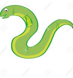 a green eel on a white background stock vector 31547458 [ 1300 x 1300 Pixel ]