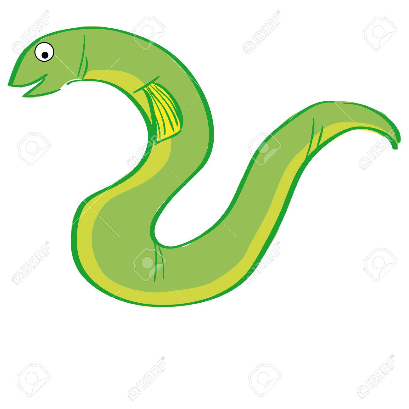 hight resolution of a green eel on a white background stock vector 31547458