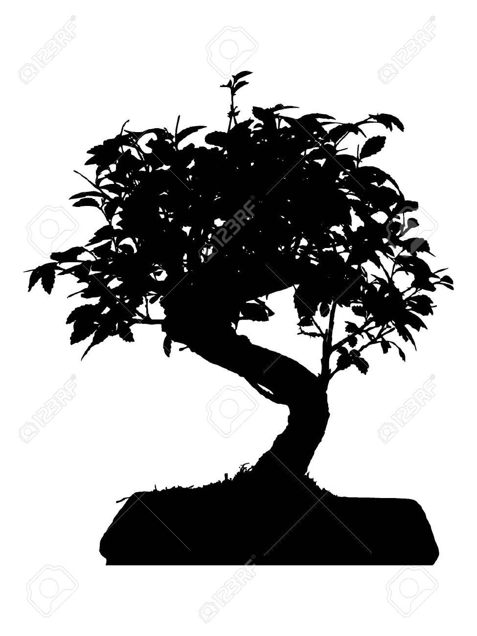 Bonsai Silhouette : bonsai, silhouette, Black, White, Silhouette, Traditional, Japanese, Bonsai, Tree.., Royalty, Cliparts,, Vectors,, Stock, Illustration., Image, 134977860.