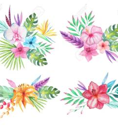 set of watercolor hand painted tropical flowers leaves and plants bright jungle exotic clip [ 1300 x 1091 Pixel ]