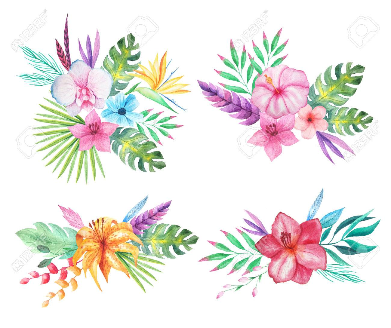 hight resolution of set of watercolor hand painted tropical flowers leaves and plants bright jungle exotic clip