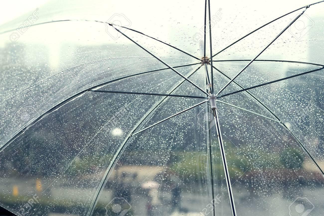 transparent umbrella in rainy