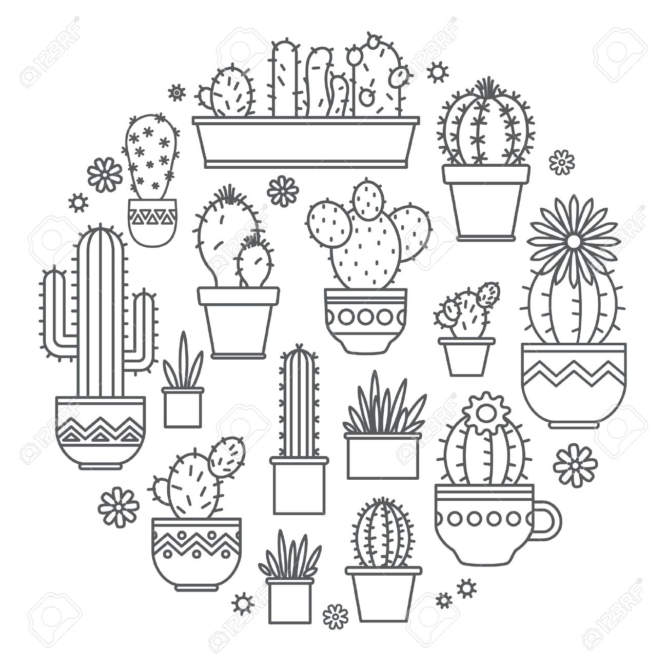 linear design potted cactus