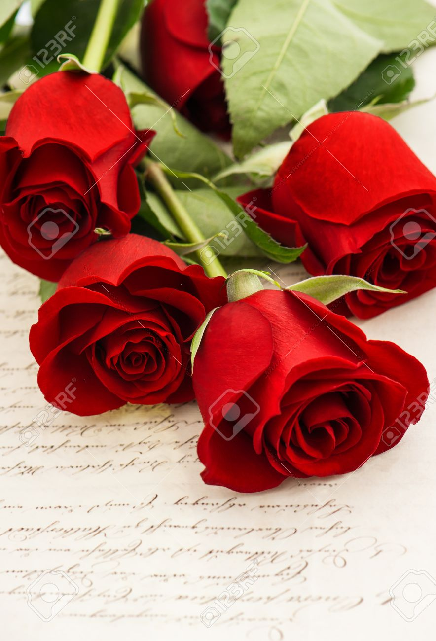 red rose flowers and