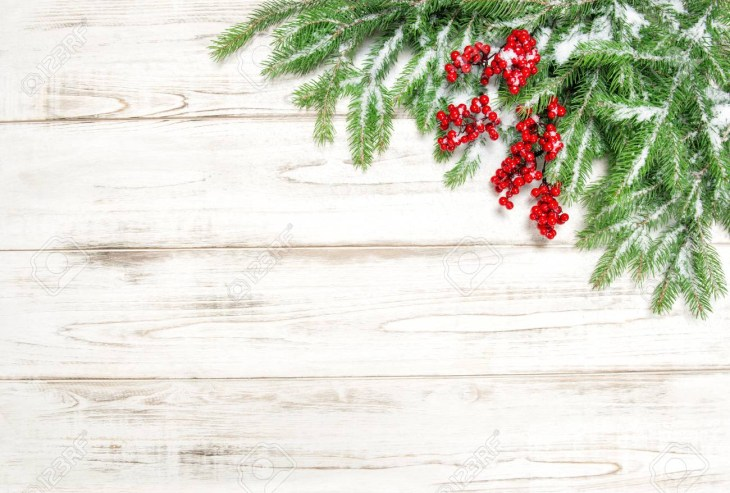 Christmas tree sprigs with red berries and snow on wooden background.  Winter holidays decoration Stock