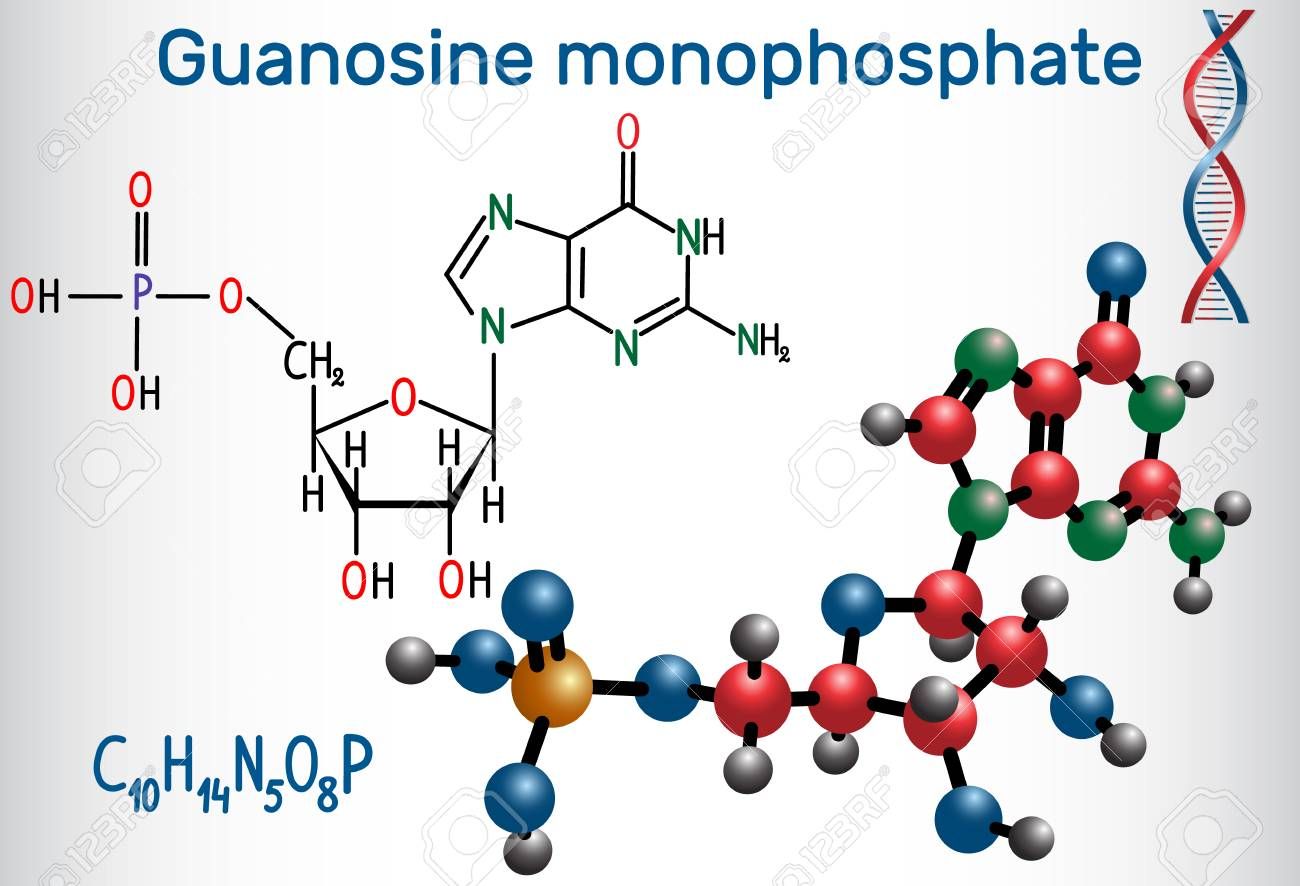 hight resolution of guanosine monophosphate gmp molecule it is an ester of phosphoric acid with the