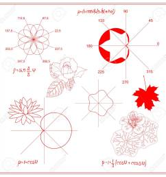 trigonometric functions and algebraic graphs of water lily sheet stock vector 99438990 [ 1300 x 1300 Pixel ]
