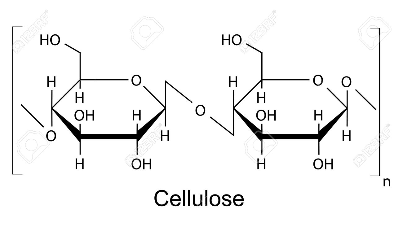 hight resolution of the structural chemical formula of the cellulose polymer 2d illustration vector isolated on