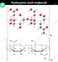 hyaluronic acid molecule model and molecular structure 2d 3d vector eps 8 [ 1300 x 1300 Pixel ]