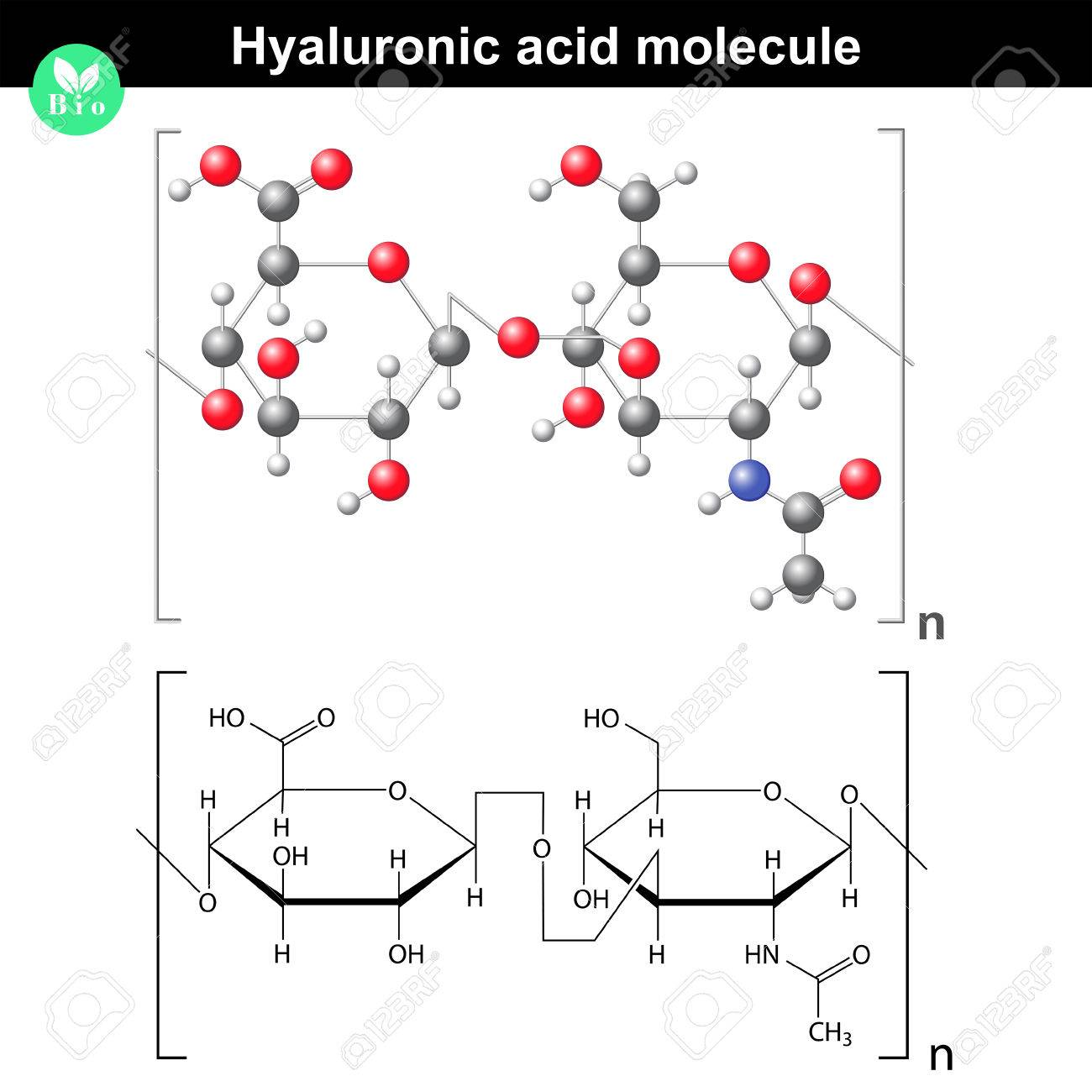 hight resolution of hyaluronic acid molecule model and molecular structure 2d 3d vector eps 8