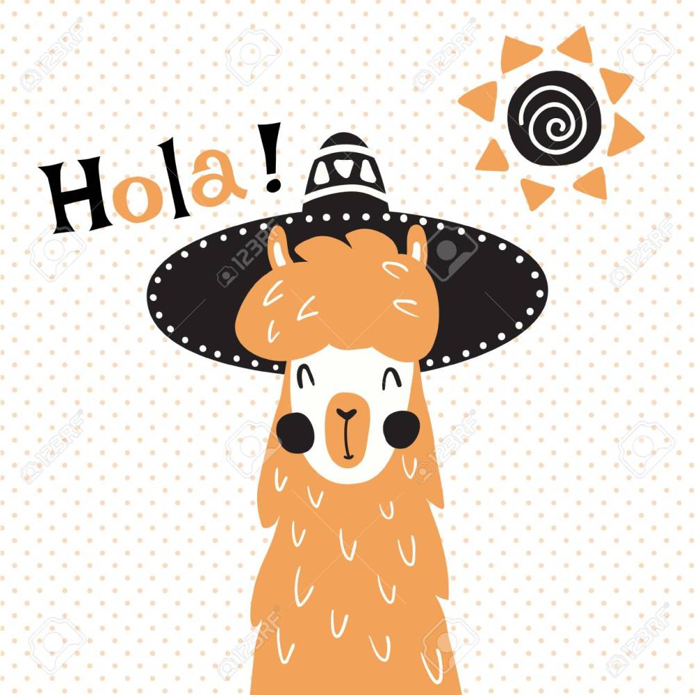 medium resolution of vector vector illustration a cute llama in mexican sombrero hat hola spanish text which is translated as hello